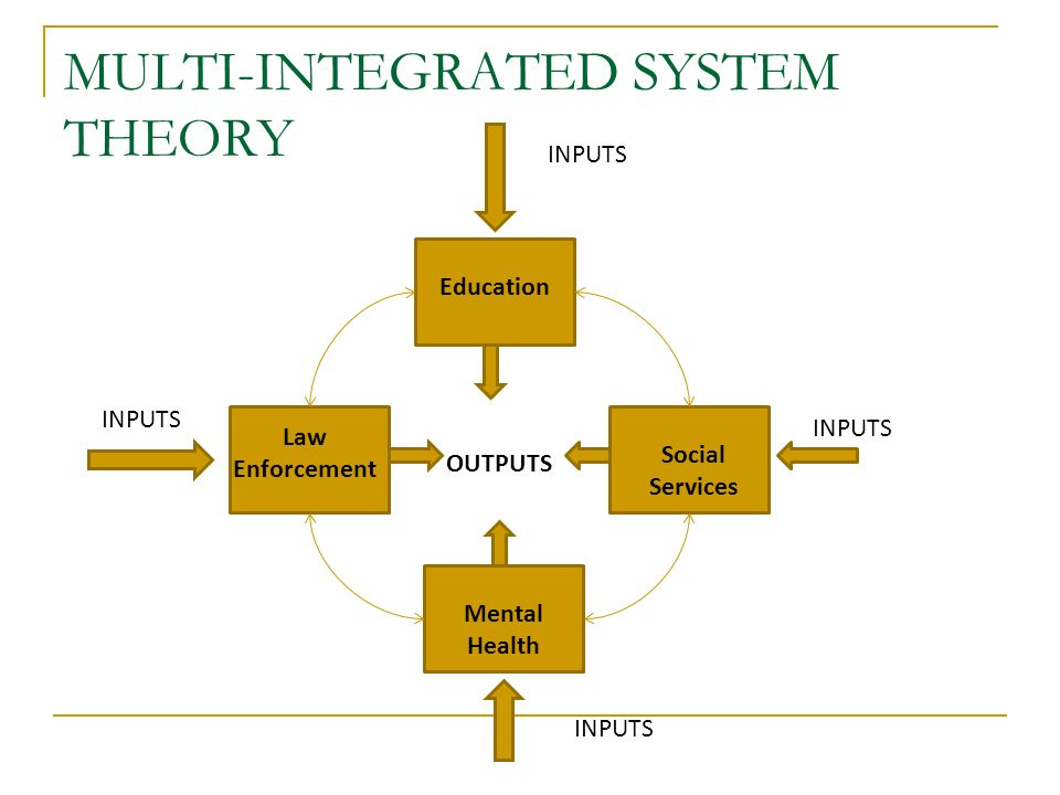 MULTI-INTEGRATED SYSTEM THEORY OUTPUTS Education Social Services Mental Health Law Enforcement INPUTS