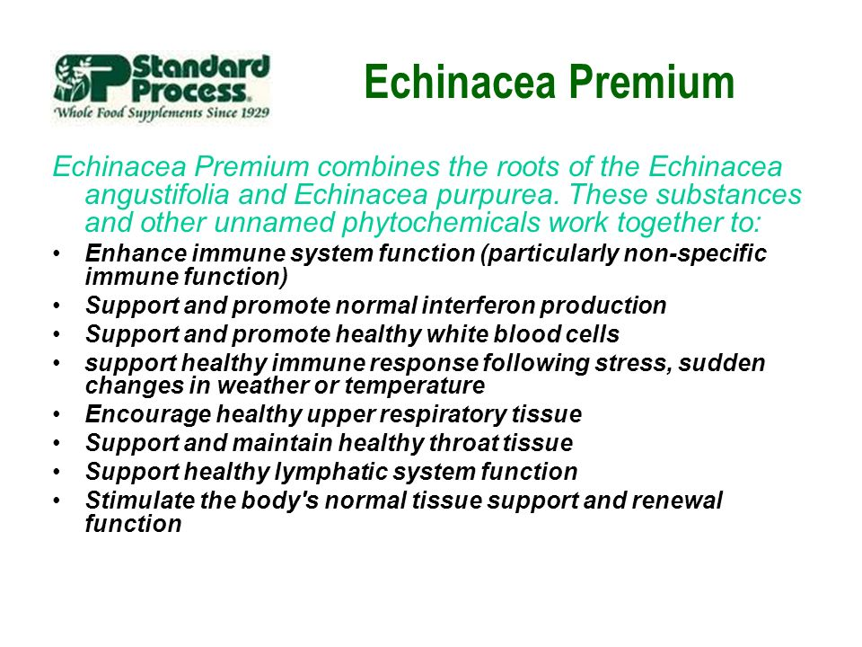 Echinacea Premium Echinacea Premium combines the roots of the Echinacea angustifolia and Echinacea purpurea. These substances and other unnamed phytoc