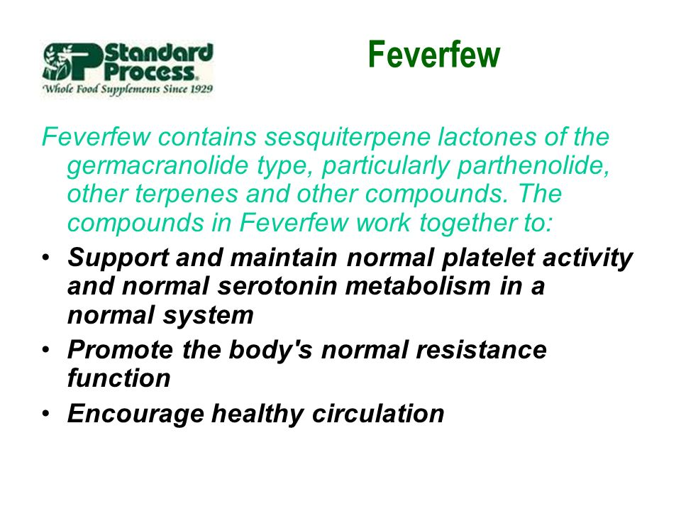 Feverfew Feverfew contains sesquiterpene lactones of the germacranolide type, particularly parthenolide, other terpenes and other compounds. The compo
