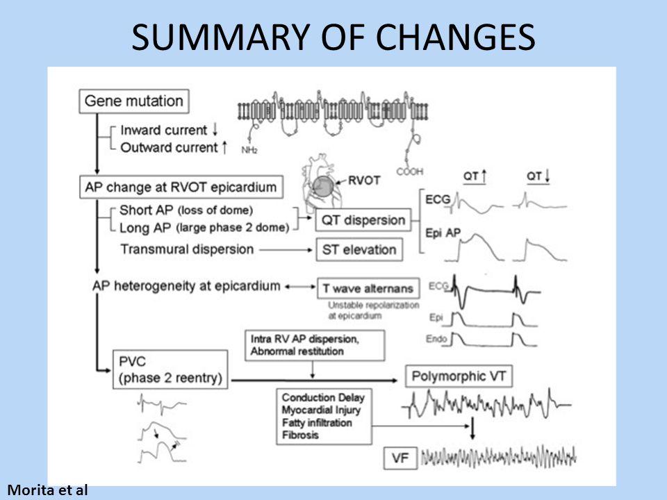 SUMMARY OF CHANGES Morita et al