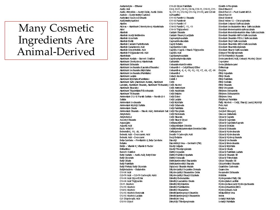 Many Cosmetic Ingredients Are Animal-Derived