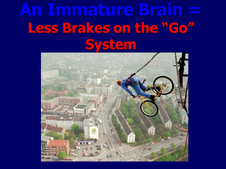 An Immature Brain = Less Brakes on the Go System