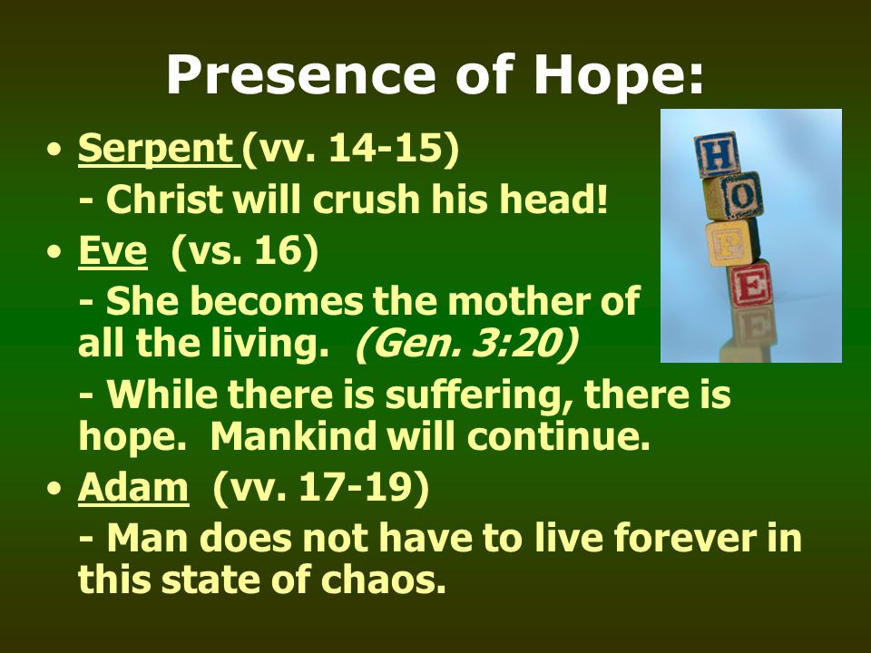 Presence of Hope: Serpent (vv. 14-15) - Christ will crush his head! Eve (vs. 16) - She becomes the mother of all the living. (Gen. 3:20) - While there