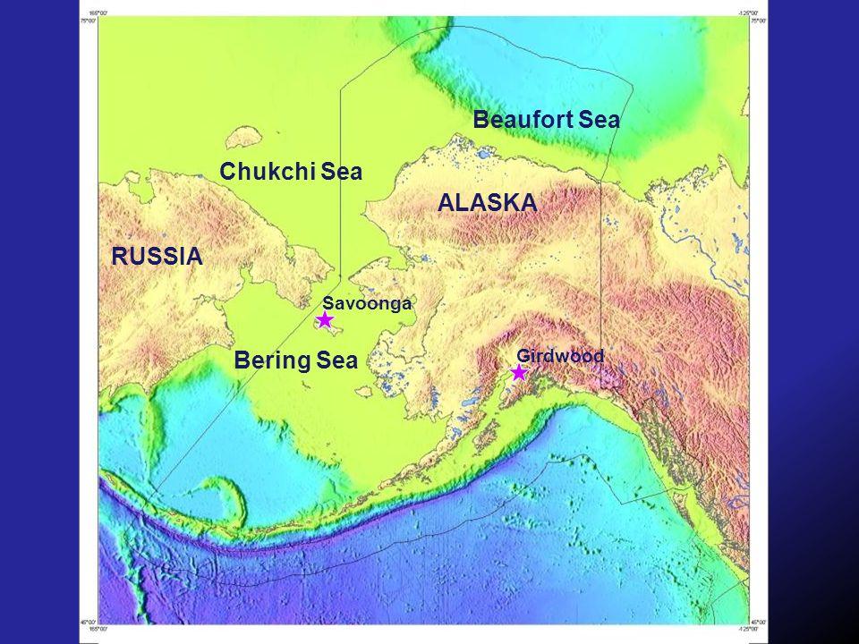 Beaufort Sea Chukchi Sea Bering Sea Girdwood Savoonga RUSSIA ALASKA