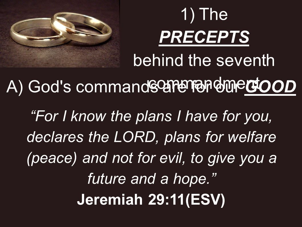 1) The PRECEPTS behind the seventh commandment B) God s commands are for our SAFETY Moreover, by them is your servant warned; in keeping them there is great reward.