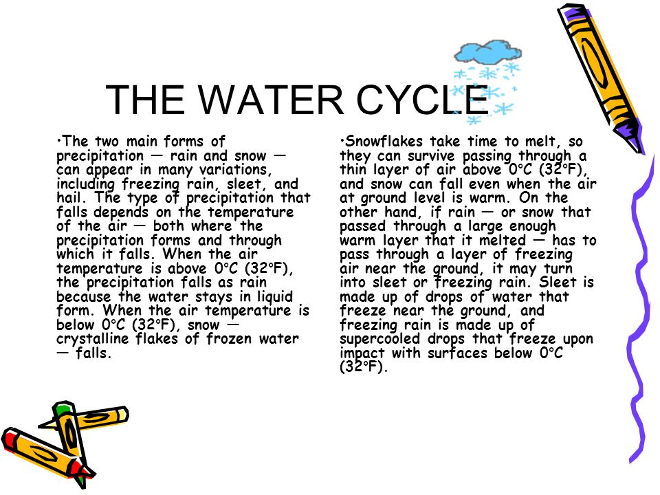 THE WATER CYCLE The two main forms of precipitation rain and snow can appear in many variations, including freezing rain, sleet, and hail. The type of