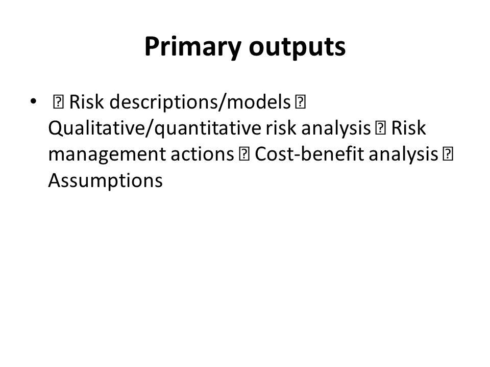 Primary outputs Risk descriptions/models Qualitative/quantitative risk analysis Risk management actions Cost-benefit analysis Assumptions