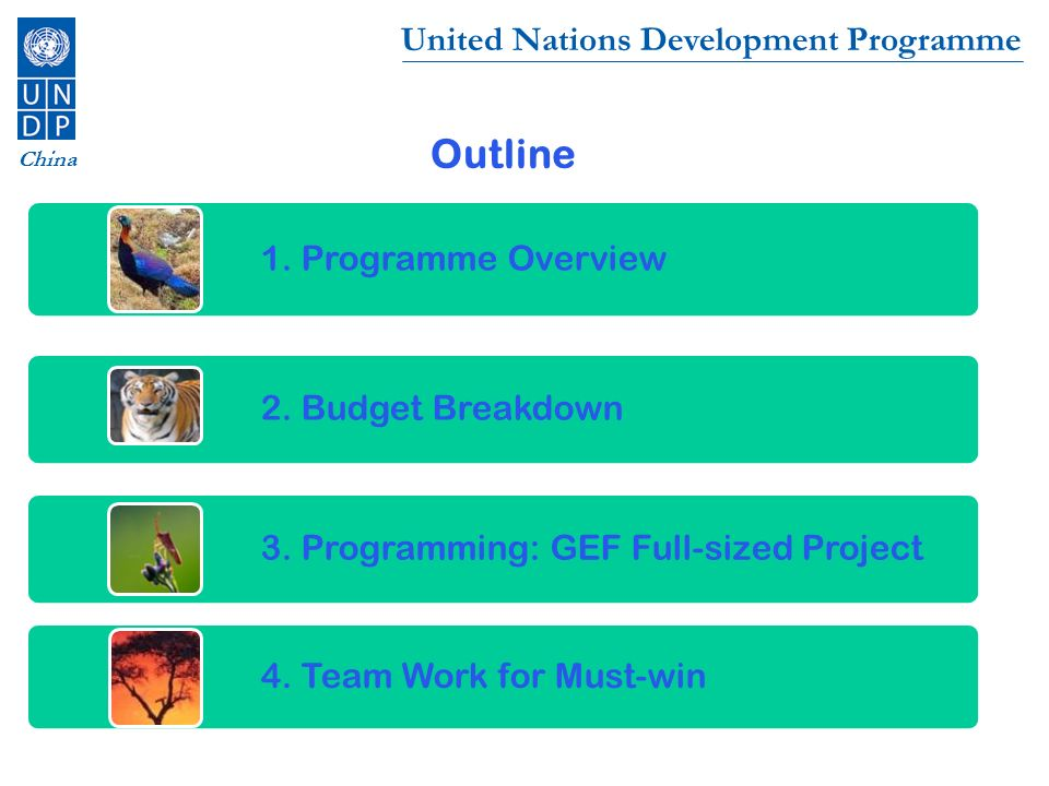 United Nations Development Programme China Outline 1. Programme Overview 2. Budget Breakdown 3. Programming: GEF Full-sized Project 4. Team Work for M