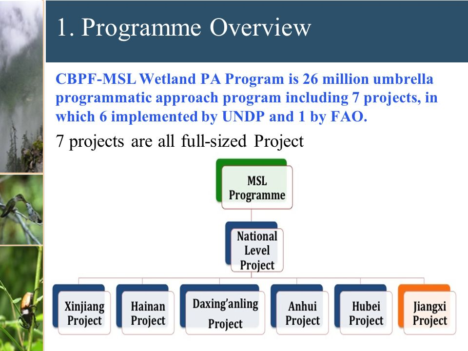 1. Programme Overview CBPF-MSL Wetland PA Program is 26 million umbrella programmatic approach program including 7 projects, in which 6 implemented by