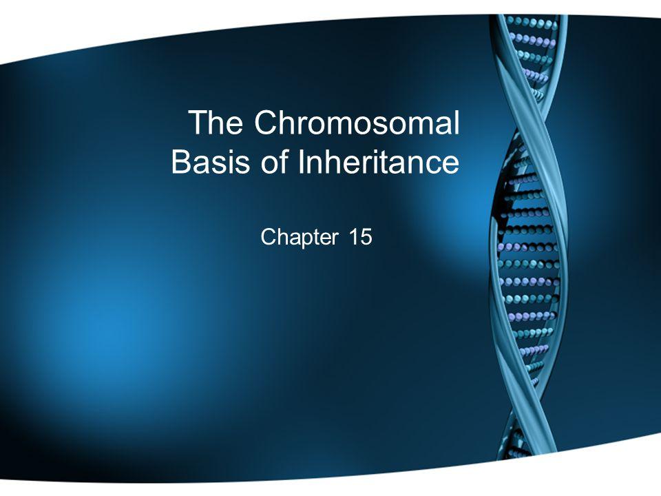 The Chromosomal Basis of Inheritance Chapter 15
