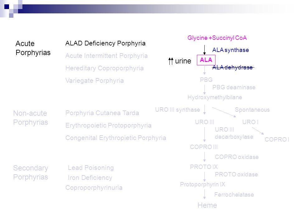 Acute Porphyrias Acute Intermittent Porphyria Variegate Porphyria Hereditary Coproporphyria Porphyria Cutanea Tarda Congenital Erythropietic Porphyria
