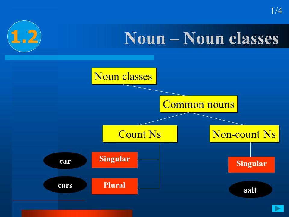 Noun – Noun classes 1.2 1/4 car cars Noun classes Common nouns Count Ns Non-count Ns Singular Plural Singular salt
