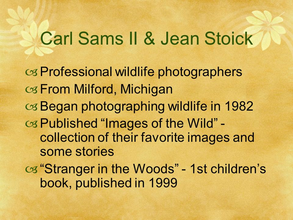 Carl Sams II & Jean Stoick Professional wildlife photographers From Milford, Michigan Began photographing wildlife in 1982 Published Images of the Wild - collection of their favorite images and some stories Stranger in the Woods - 1st childrens book, published in 1999