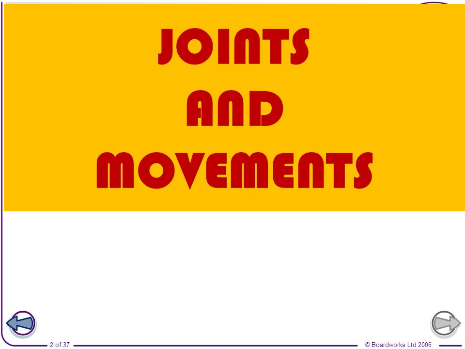 © Boardworks Ltd 20063 of 37 Joint movement – what are joints.