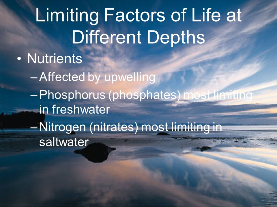 Nutrients –Affected by upwelling –Phosphorus (phosphates) most limiting in freshwater –Nitrogen (nitrates) most limiting in saltwater