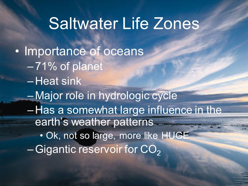 Saltwater Life Zones Importance of oceans –71% of planet –Heat sink –Major role in hydrologic cycle –Has a somewhat large influence in the earths weat