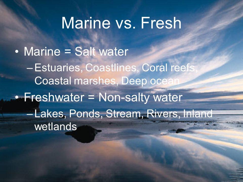 Marine vs. Fresh Marine = Salt water –Estuaries, Coastlines, Coral reefs, Coastal marshes, Deep ocean Freshwater = Non-salty water –Lakes, Ponds, Stre