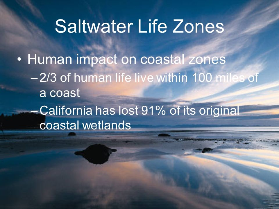 Saltwater Life Zones Human impact on coastal zones –2/3 of human life live within 100 miles of a coast –California has lost 91% of its original coasta