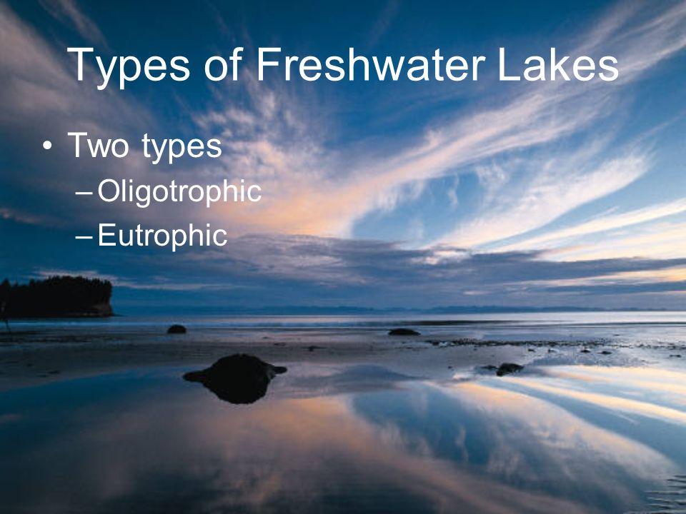 Types of Freshwater Lakes Two types –Oligotrophic –Eutrophic