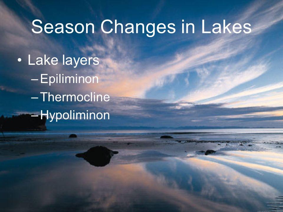Lake layers –Epiliminon –Thermocline –Hypoliminon