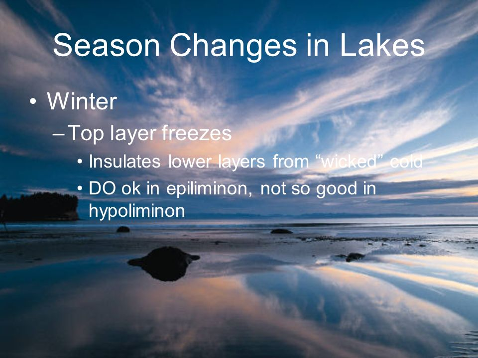 Season Changes in Lakes Winter –Top layer freezes Insulates lower layers from wicked cold DO ok in epiliminon, not so good in hypoliminon