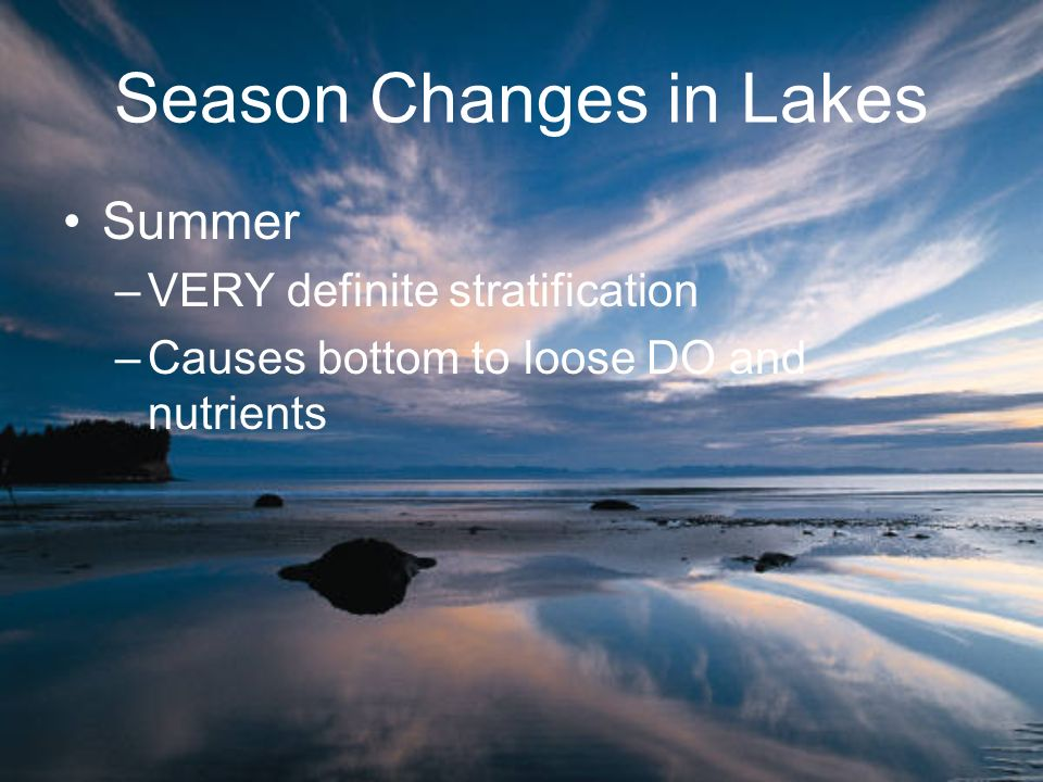 Summer –VERY definite stratification –Causes bottom to loose DO and nutrients