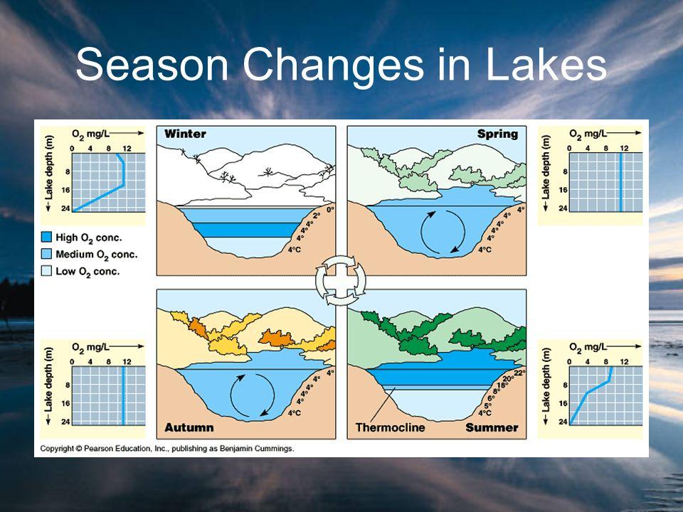 Season Changes in Lakes