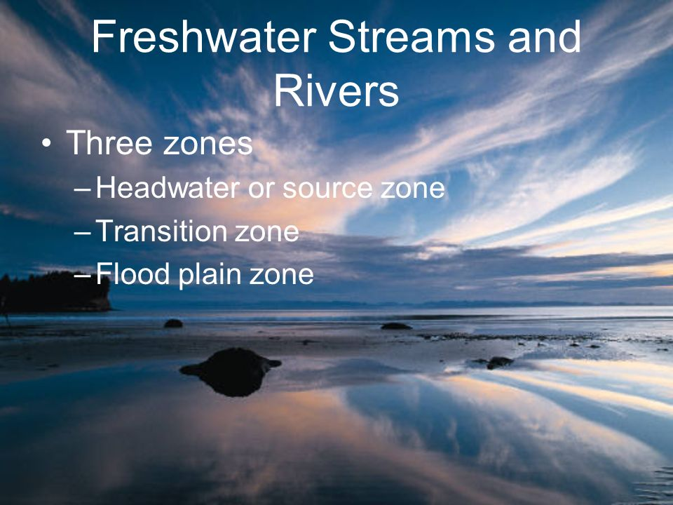 Freshwater Streams and Rivers Three zones –Headwater or source zone –Transition zone –Flood plain zone