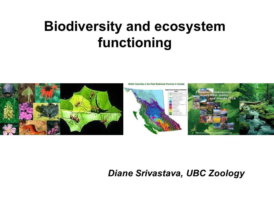 Biodiversity and ecosystem functioning Diane Srivastava, UBC Zoology