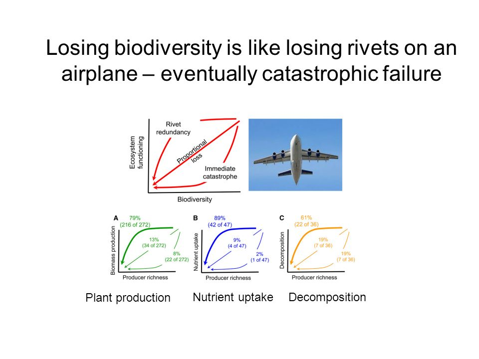 Losing biodiversity is like losing rivets on an airplane – eventually catastrophic failure Plant production Nutrient uptakeDecomposition