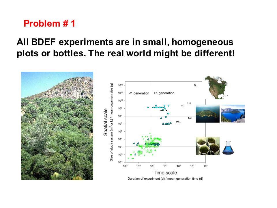 All BDEF experiments are in small, homogeneous plots or bottles. The real world might be different! Problem # 1