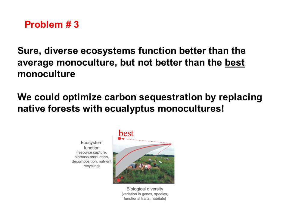 Problem # 3 Sure, diverse ecosystems function better than the average monoculture, but not better than the best monoculture We could optimize carbon s
