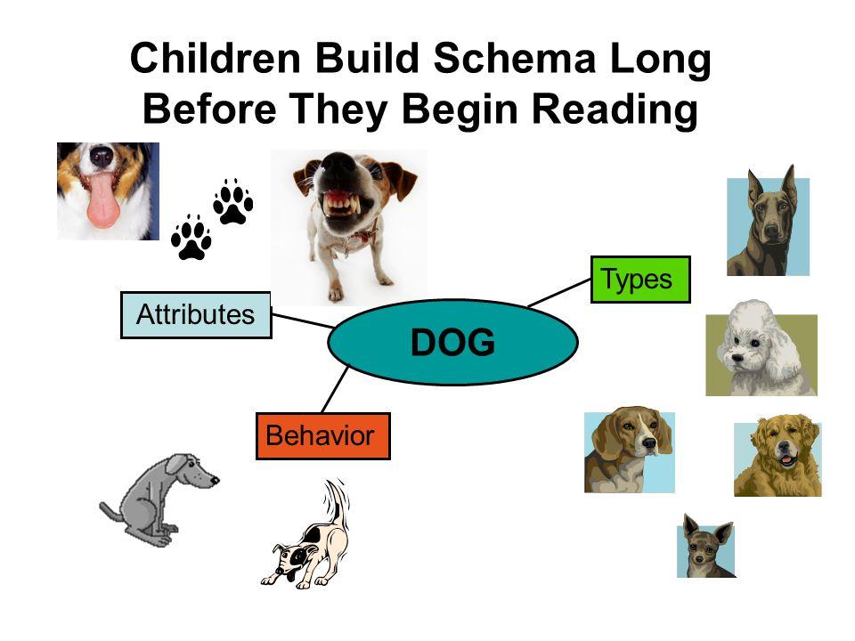 Children Build Schema Long Before They Begin Reading Attributes Types Behavior DOG