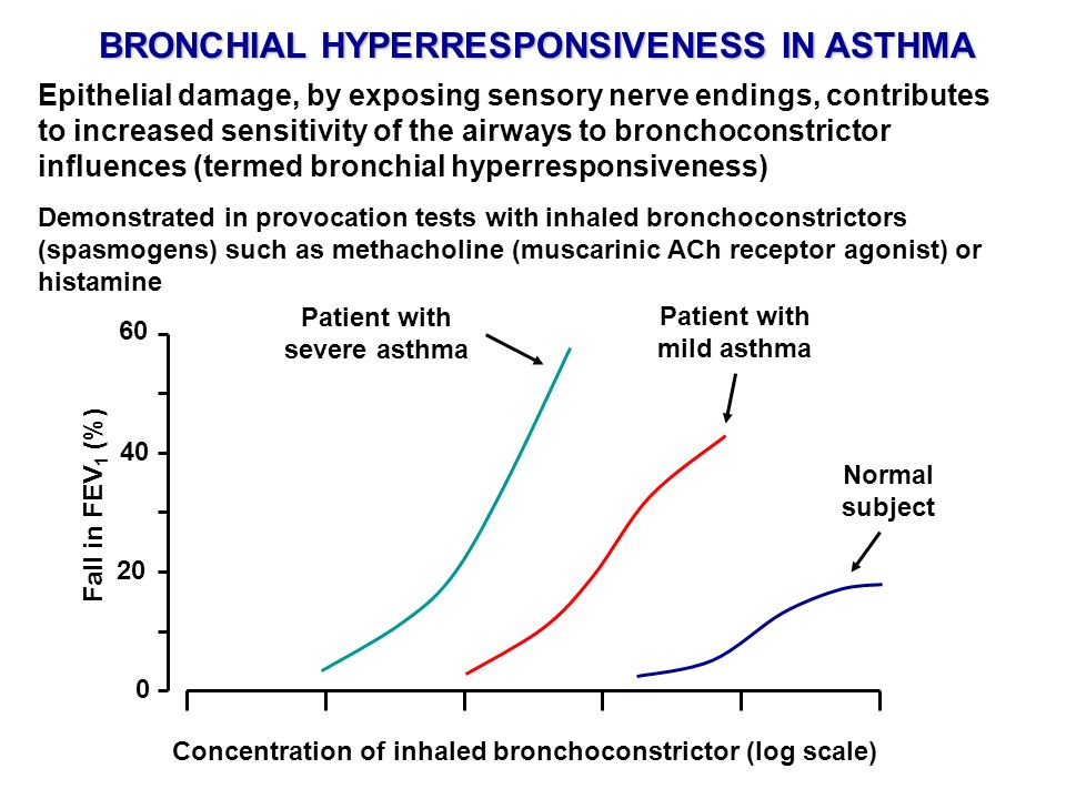 In many individuals, an asthma attack comprises immediate (mainly bronchospasm) and delayed (inflammatory reaction) phases IMMEDIATE AND DELAYED PHASES OF AN ASTHMA ATTACK 02468 Time (hours) 1.0 1.5 2.0 2.5 3.0 FEV 1 (lires) Inhalation of grass pollen Early phase (bronchospasm) Late phase (inflammation)