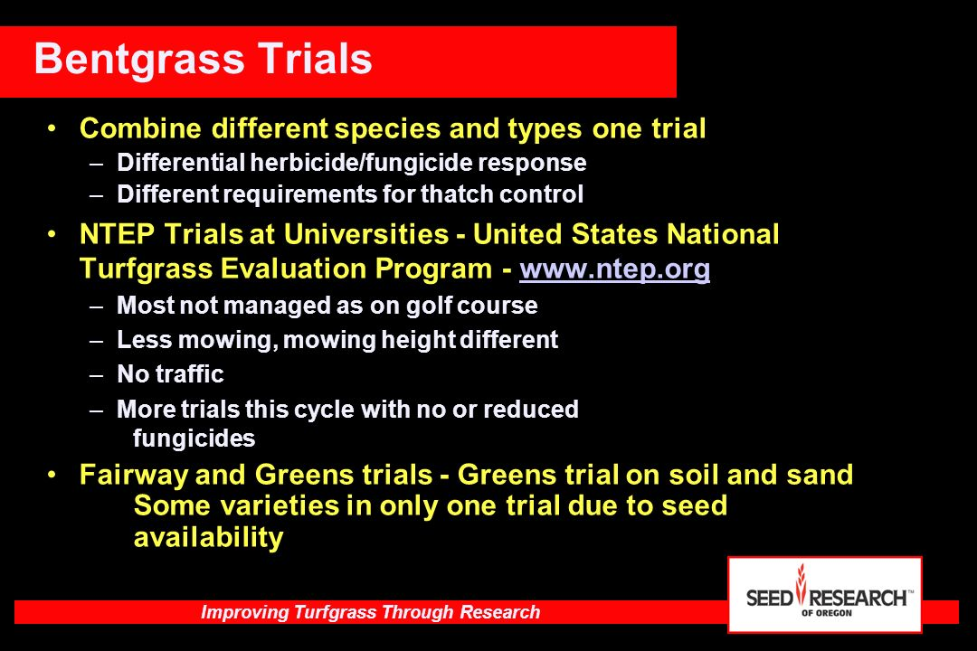 Improving Turfgrass Through Research Germination percentage of Kentucky bluegrass varieties at 5,000 ppm salts Preliminary data after 3 weeks Cultivar% Germ Orfeo38SR 22844 SR 210936Spitfire3 Baron24Bandera3 Northstar10Argos3 Arcadia 8Moonlight0 STR 2959 6Moonshadow0 Showcase 4Touchdown0 Ulysses 4LSD @ 5%4 Salt germination bluegrasses