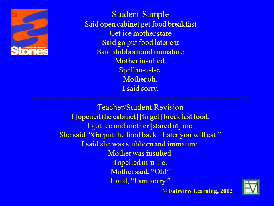 © Fairview Learning, 2002 Student Sample Said open cabinet get food breakfast Get ice mother stare Said go put food later eat Said stubborn and immatu