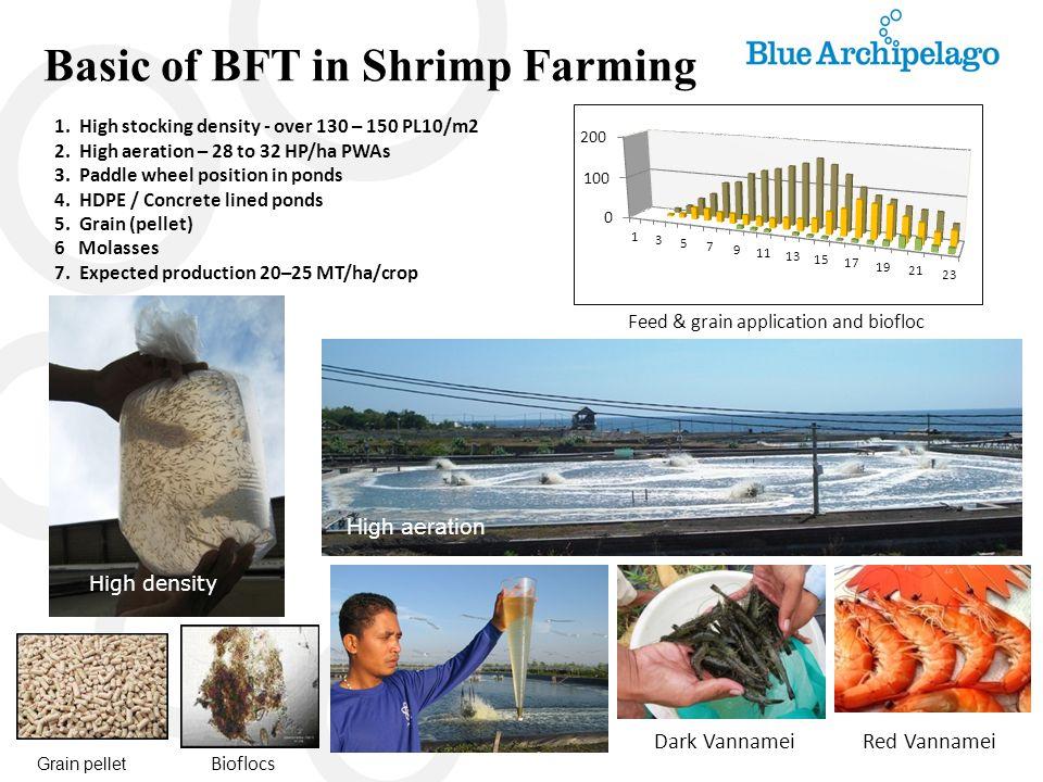 Belize, Central America Biofloc system culture Belize Aqua Ltd – A view Belize Aqua Ltd - ponds