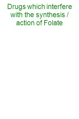 Drugs which interfere with the synthesis / action of Folate