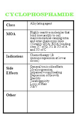 cyclophosphamide Class Alkylating agent MOA Highly reactive molecules that bind irreversibly to cell macromolecules causing intra and inter chain cros