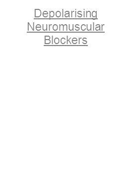 Depolarising Neuromuscular Blockers