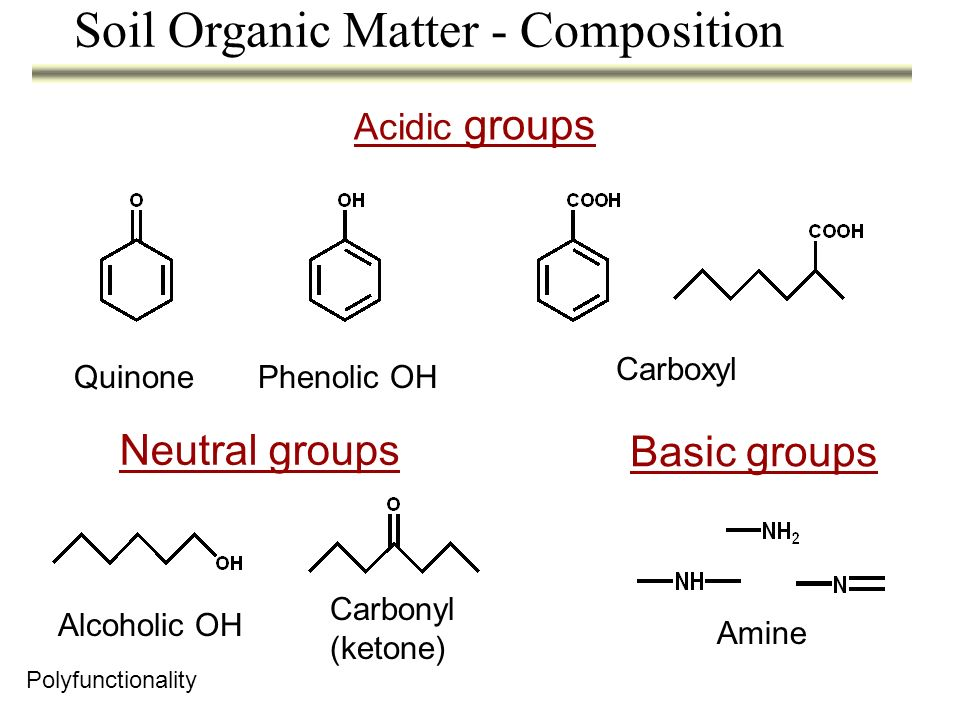Probable structures can be estimated using the dimer concept ? Soil Organic Matter - Composition