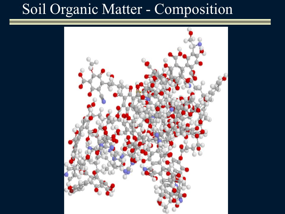 Soil Organic Matter - Composition