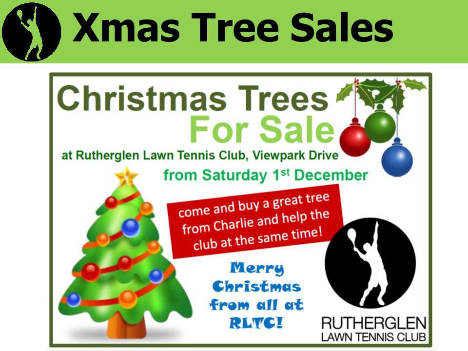 Xmas Tree Sales