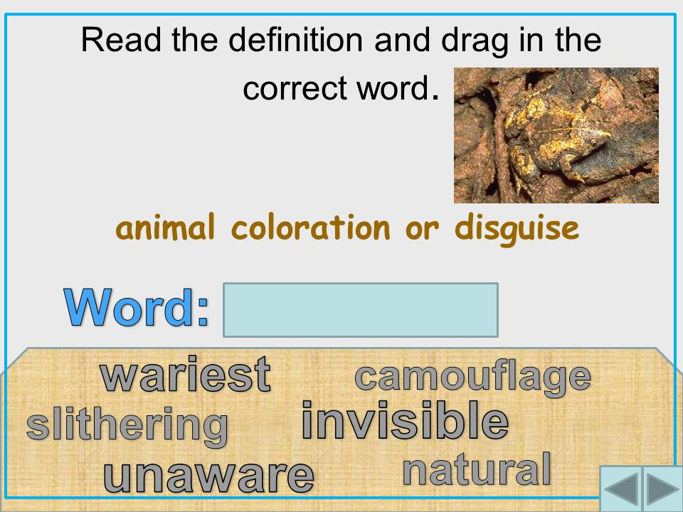 Read the definition and drag in the correct word. animal coloration or disguise