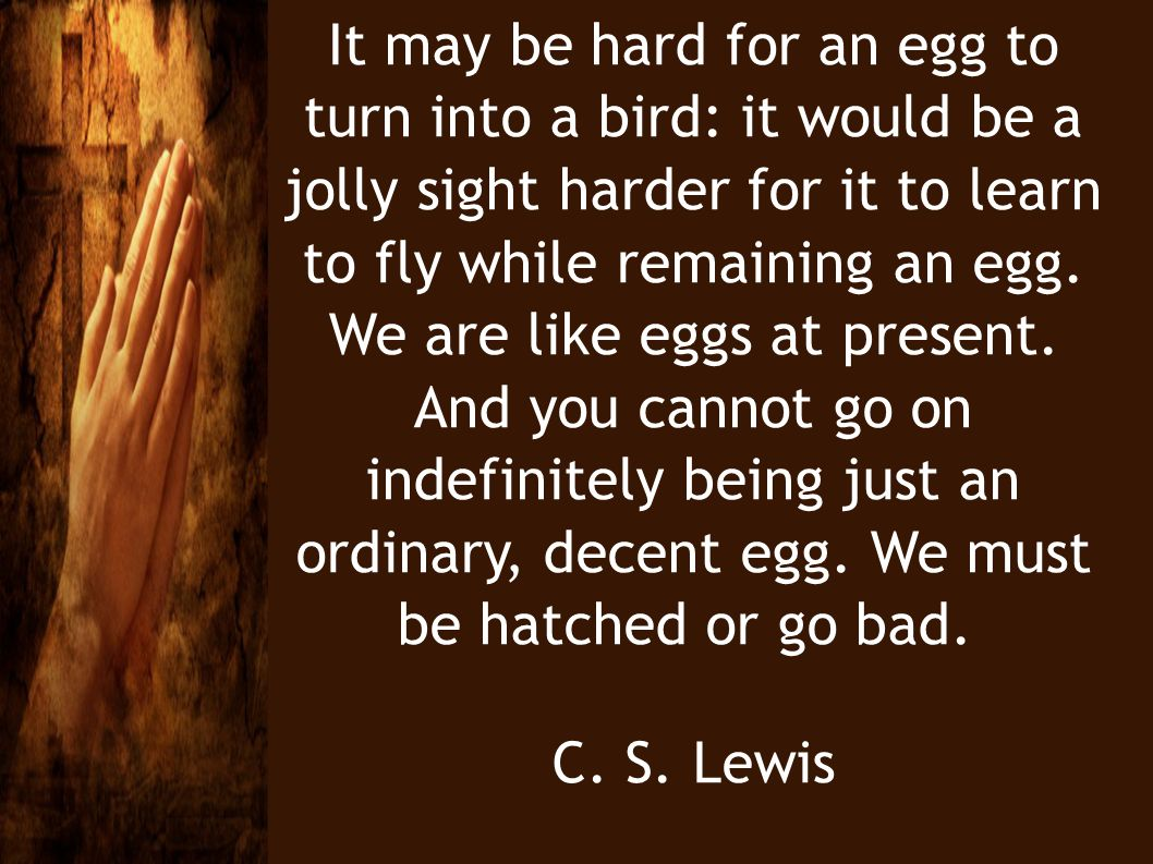 It may be hard for an egg to turn into a bird: it would be a jolly sight harder for it to learn to fly while remaining an egg. We are like eggs at pre