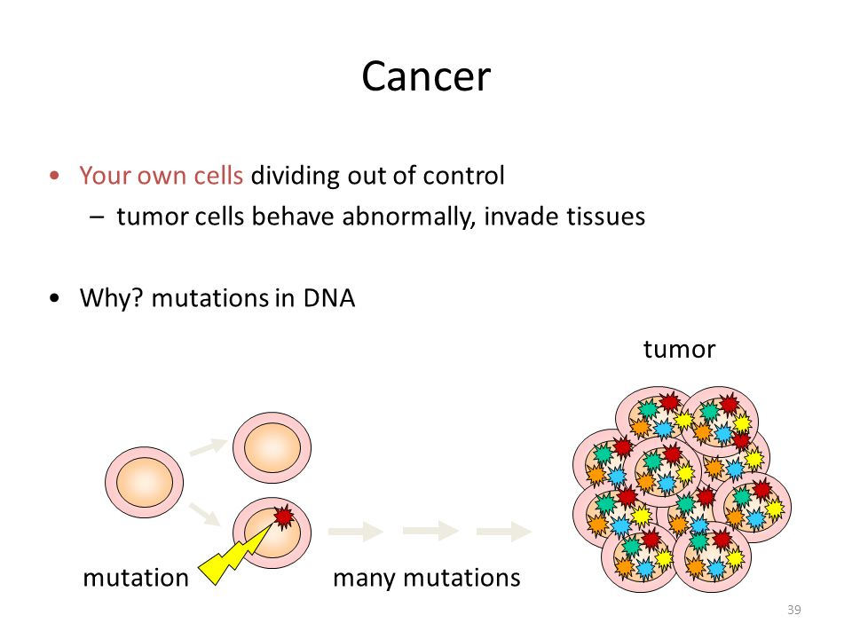 39 mutation Cancer Your own cells dividing out of control –tumor cells behave abnormally, invade tissues Why? mutations in DNA many mutations tumor