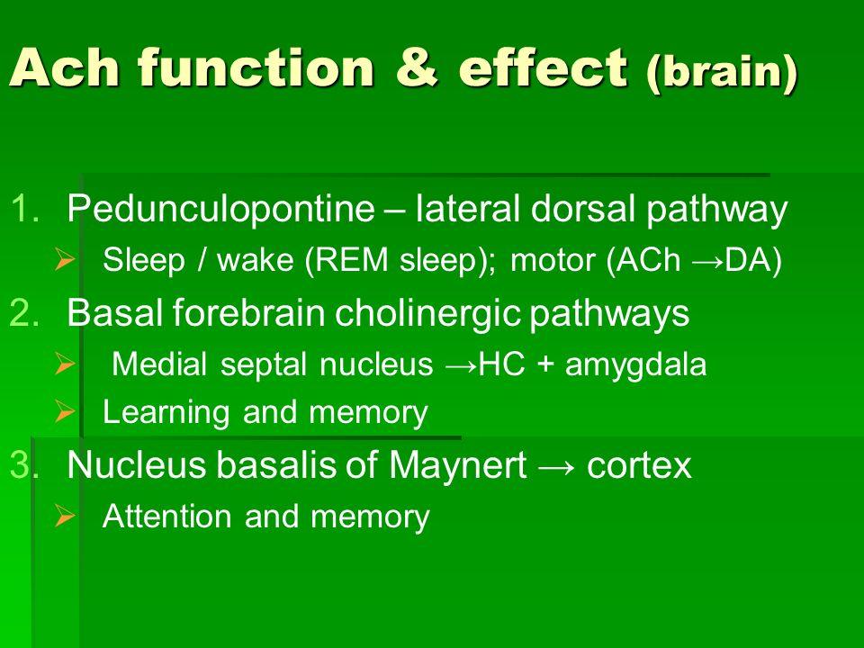 Ach function & effect (brain) 1. 1.Pedunculopontine – lateral dorsal pathway Sleep / wake (REM sleep); motor (ACh DA) 2. 2.Basal forebrain cholinergic