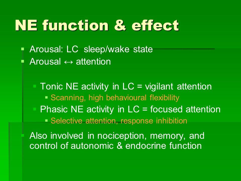 NE function & effect Arousal: LC sleep/wake state Arousal attention Tonic NE activity in LC = vigilant attention Scanning, high behavioural flexibilit