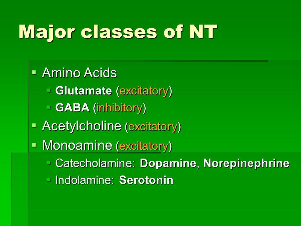 Major classes of NT Amino Acids Amino Acids Glutamate (excitatory) Glutamate (excitatory) GABA (inhibitory) GABA (inhibitory) Acetylcholine (excitator