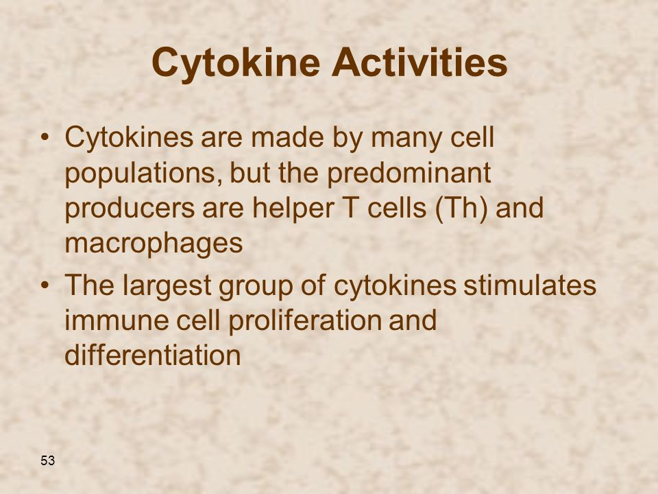 53 Cytokine Activities Cytokines are made by many cell populations, but the predominant producers are helper T cells (Th) and macrophages The largest